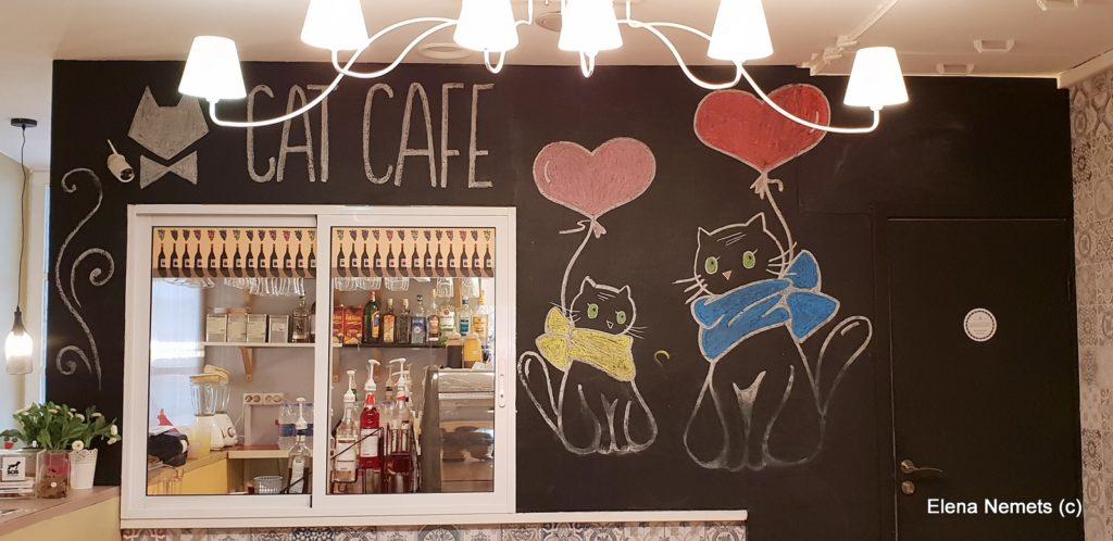 Cat cafe Вильнюс