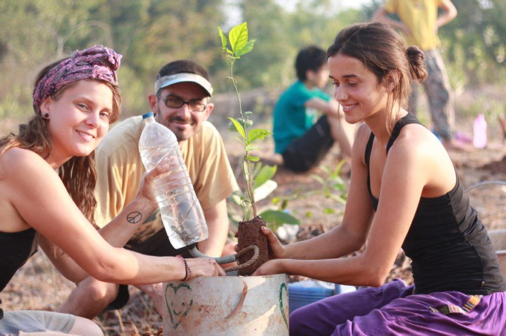 Sadhana Forest India